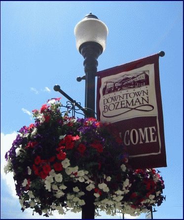 Bozemania the bozeman blog bozeman monana june 2004 for Flower delivery bozeman mt
